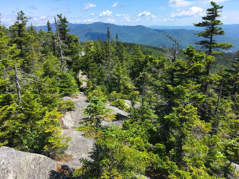 A view of the Vermont Long Trail form high up on a forested ridge.