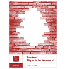 Breakout: Pilgrim in the Microworld by David Sudnow