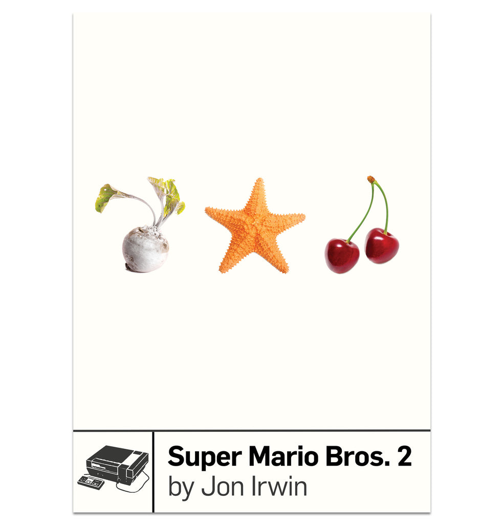 Super Mario Bros. 2 by Jon Irwin from Boss Fight Books