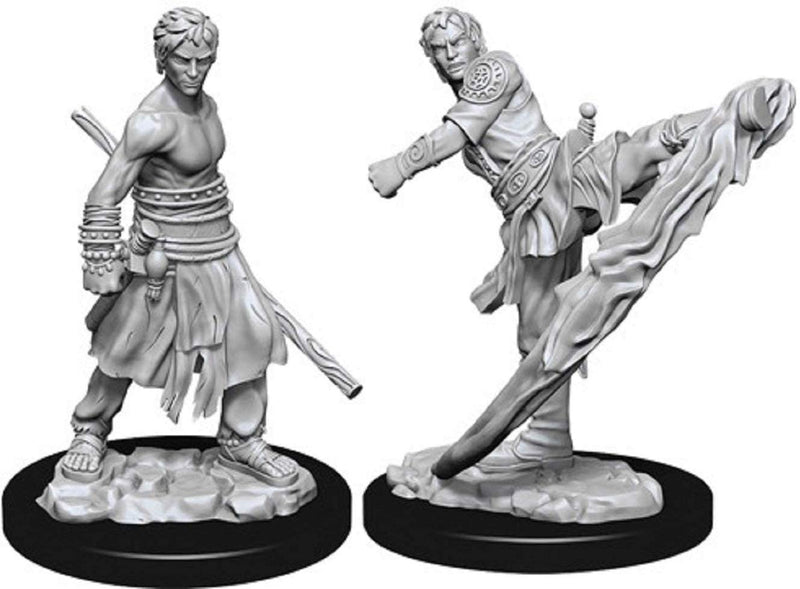 D&D Nolzur's Marvelous Unpainted Miniatures: Male Half-Elf Monk