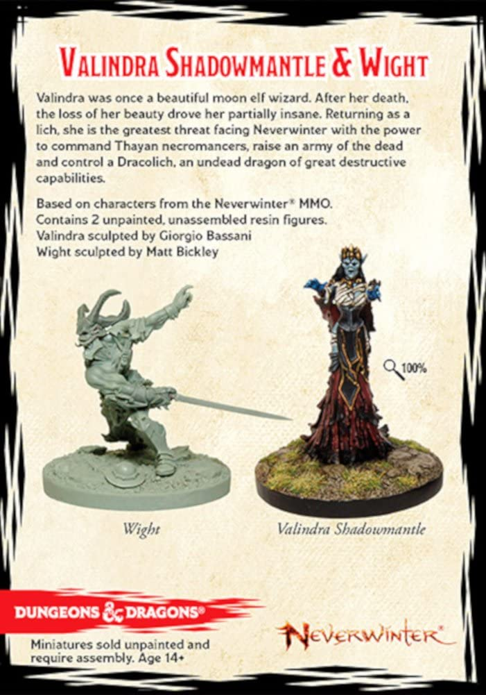 D&D Collector's Series Miniatures: Neverwinter - Valindra Shadowmantle & Wight