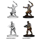 D&D Nolzur's Marvelous Unpainted Miniatures: Nameless One