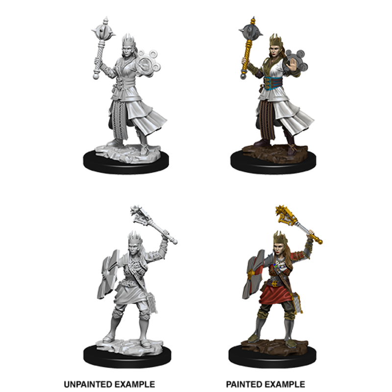 D&D Nolzur's Marvelous Unpainted Miniatures: Female Human Cleric