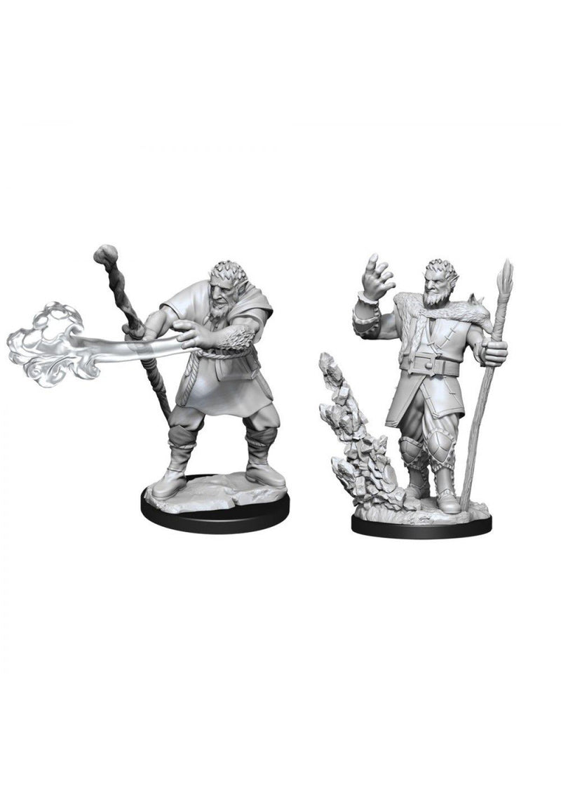 D&D Nolzur's Marvelous Unpainted Miniatures: Male Firbolg Druid