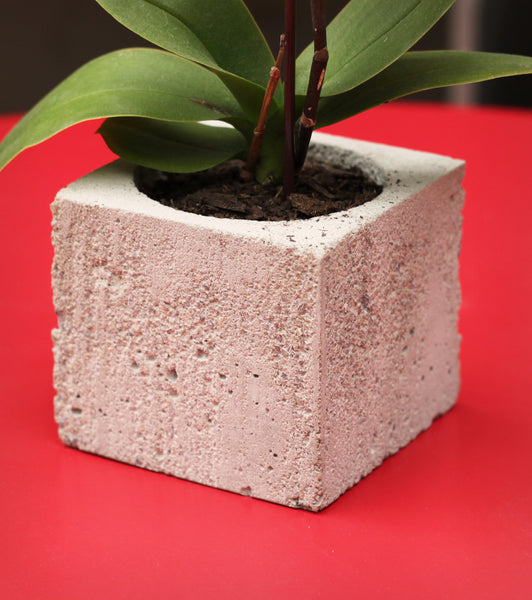 Hand-Casted Concrete Planter - 'Perfection' Design 3
