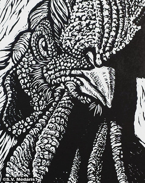 detail of black on white blockprint of rooster face