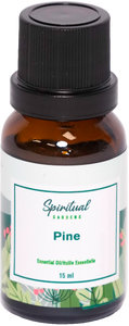 Essential Oil - Pine
