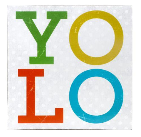 YOLO You Only Live Once Shelf Sitter Sign 4