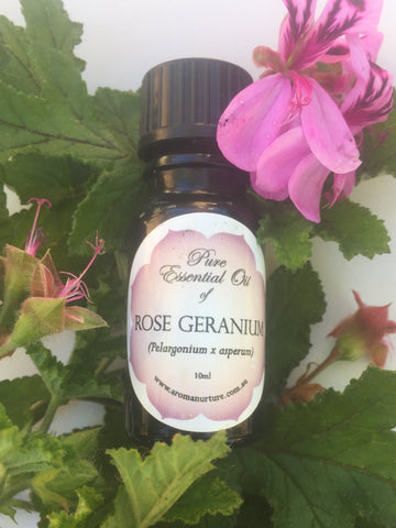 Pure Essential Oil of Rose Geranium