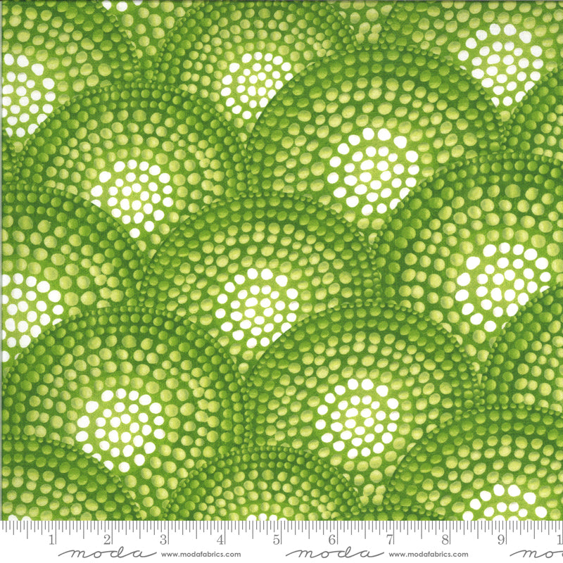 Green dotted circles with white centers