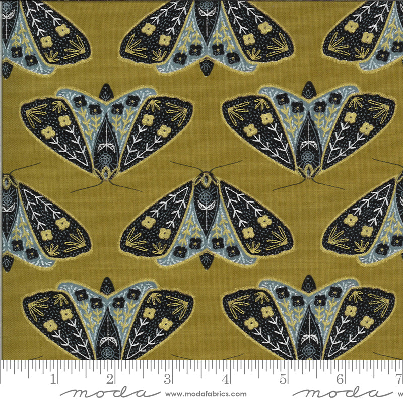 Black, blue, and gold moths on Dijon yellow