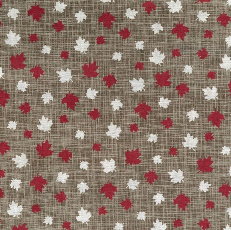White and red maple leaves on a brown background