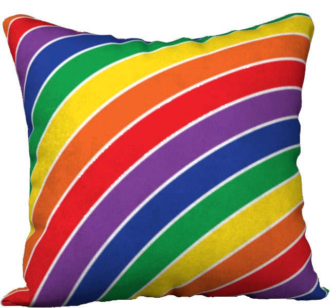The Rainbow Pillow