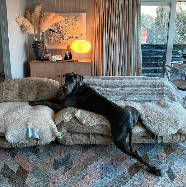 AT HOME WITH DOGS: SIMONE HAAG & RALPH