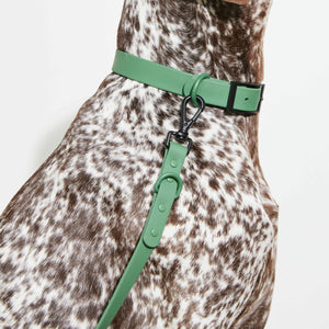 Waterproof Dog Lead Green