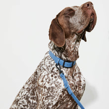 Load image into Gallery viewer, Waterproof Dog Lead Blue