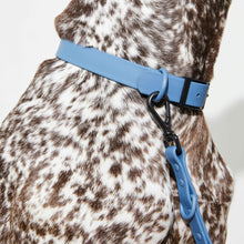 Load image into Gallery viewer, Waterproof Dog Collar Blue