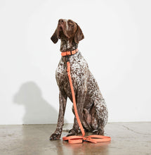 Load image into Gallery viewer, Waterproof Dog Lead Peach