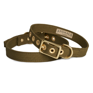 Recycled Canvas Dog Collar Olive