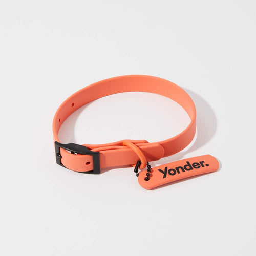 Waterproof Dog Collar Peach
