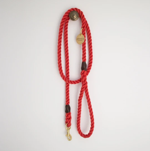All Weather Dog Leash in Red