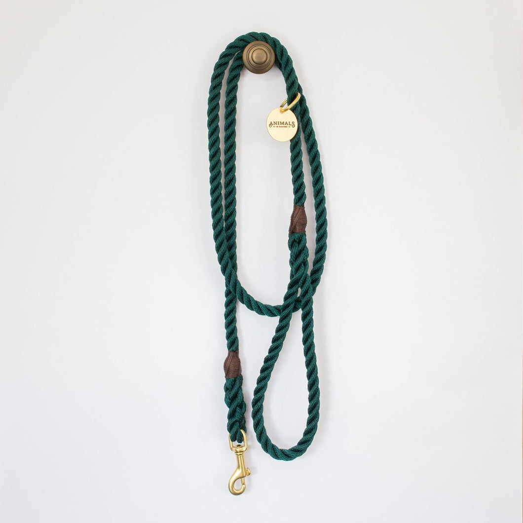 Marine Rope Dog Leash in Teal