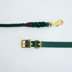 Recycled Canvas Dog Collar Teal