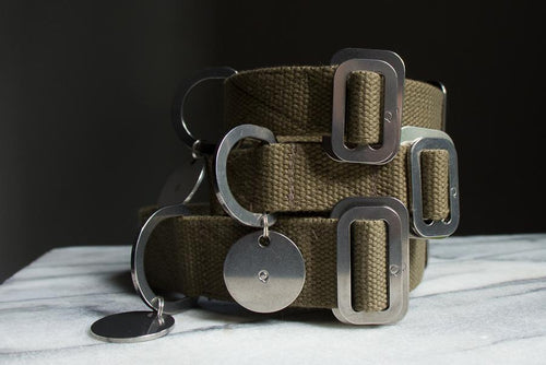 Cotton Canvas Dog Collar Khaki