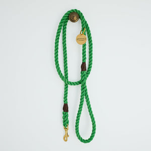 All Weather Dog Leash in Bright Green