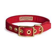 Load image into Gallery viewer, All Weather Canvas Dog Collar Red