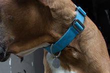 Load image into Gallery viewer, Cotton Canvas Dog Collar Sky Blue