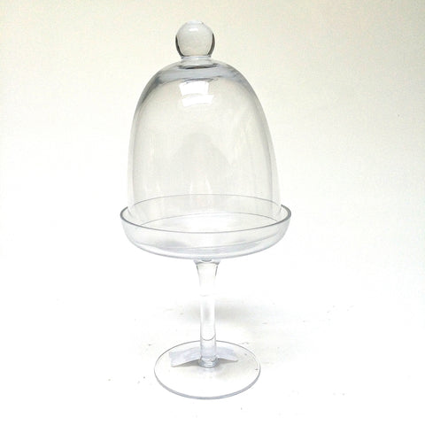 Glass Pedestal Stand + Dome