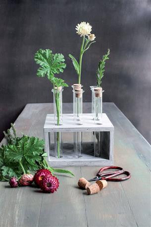 Glass Tube Vases with Wood Holder
