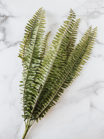 Fern Multi Leaf Bush - Brandt's Home Decor
