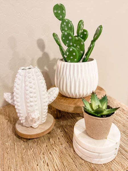 White Ceramic Cactus Vase- Tall - Brandt's Home Decor