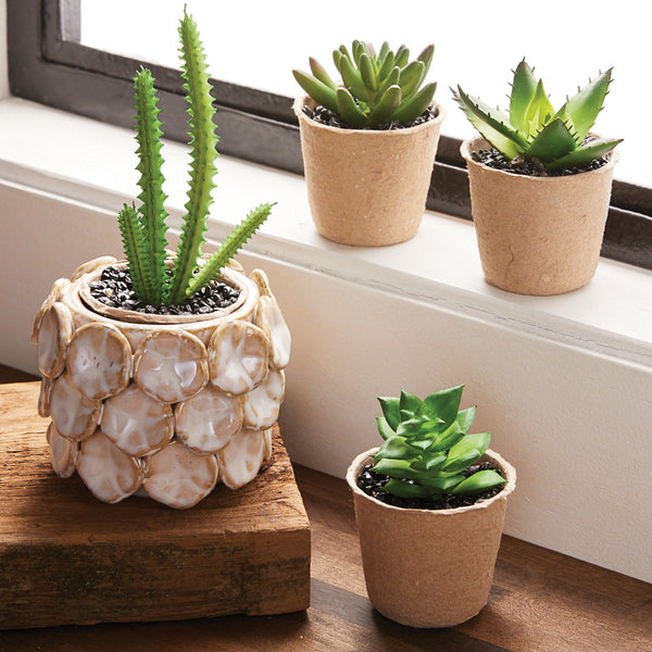 Aloe Vera Crocodile Faux Succulent - Brandt's Home Decor
