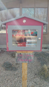 Bungalow Library / Little Pantry / Neighborhood Library / Blessing Box