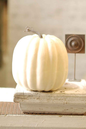 "8""x7"" Cream Pumpkin"