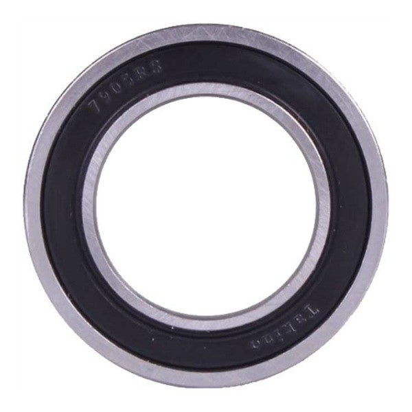 Freecoaster Hub Bearing