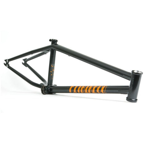 FIT FRAME SALE OCTOBER