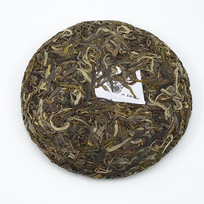 Raw Puer Tea - 2016 Untitled 02 -