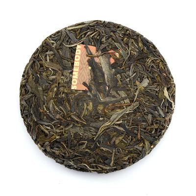 Raw Puer Tea - 2020 Hotline Space Coyote -