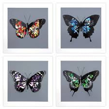 Martin Whatson - Butterfly - Set of 4 - 2017
