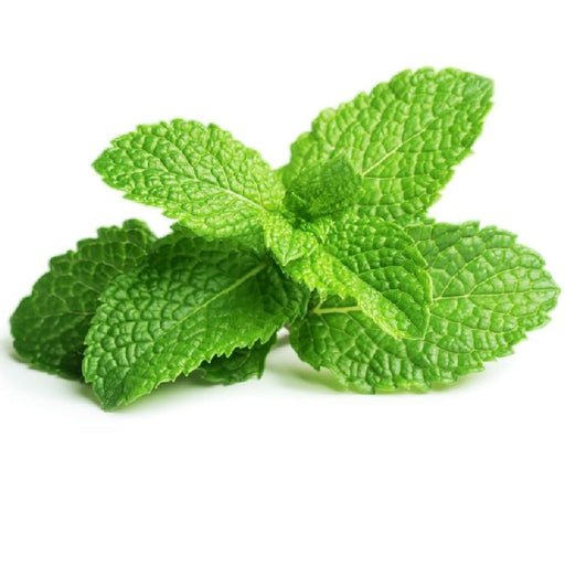 Mint /bunch - murukali.com