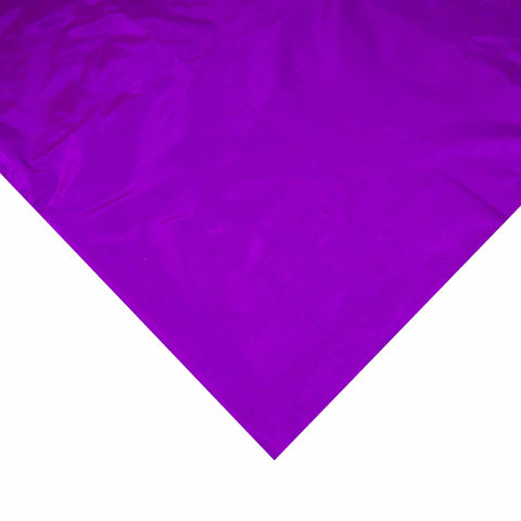 Egg Plant Purple Soft Silk Fabric