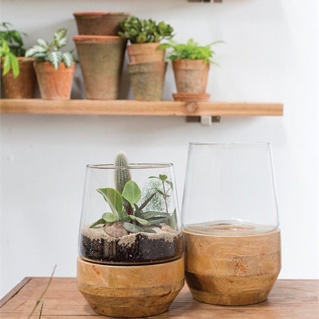 Wood + Glass Farmhouse Terrarium