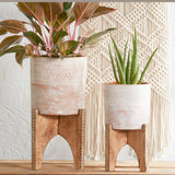 Etched Clay Planter Pot + Mango Wood Stand