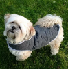 Quilted Dog Coat Pattern (3 sizes)