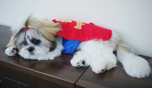 SuperDog singlet with Flying Cape!
