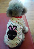 Bunny Polka Dot Top